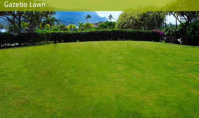 gazebo lawn