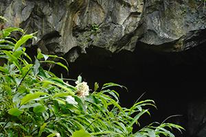 Maniniholo Dry Cave